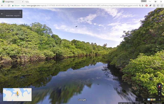 Amazon Rainforest, courtesy Google Maps