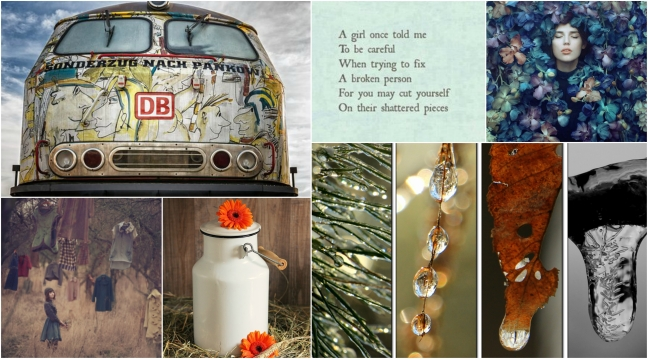 Mandibelles Collage 1.jpg