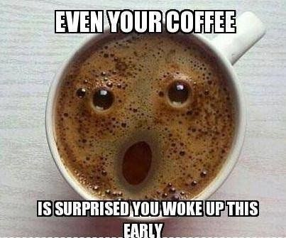 7adf8a9c11308fd619d11aa9515c9814--funny-friday-humor-funny-good-morning-quotes (403x335)