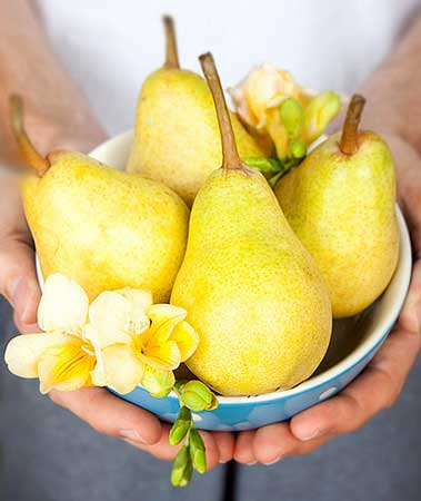 pears-in-blue-bowl