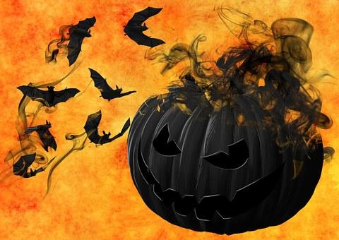 pumpkin-988231__340