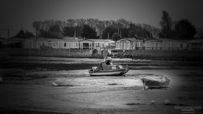 On the mudflats