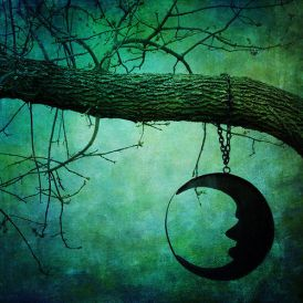 65869-Hanging-Moon-Sillouette