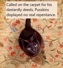 Carpet cat 2